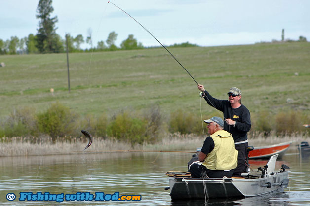 Salmon lake douglas lake ranch fishing with rod for Douglas lake fishing