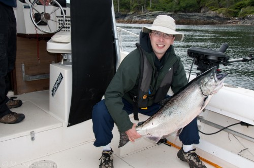 Northern Vancouver Island chinook salmon
