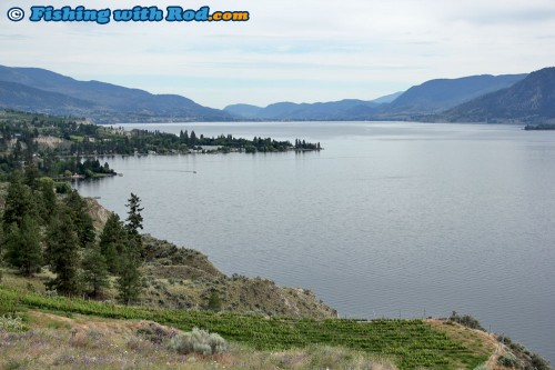 The view of Naramata and Penticton