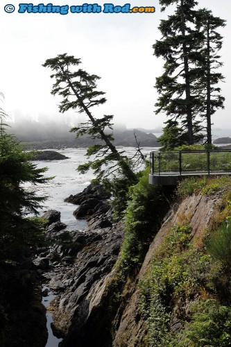 The View at Black Rock Oceanfront Resort