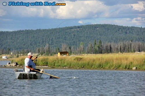 Catching Trout at Tunkwa Lake BC