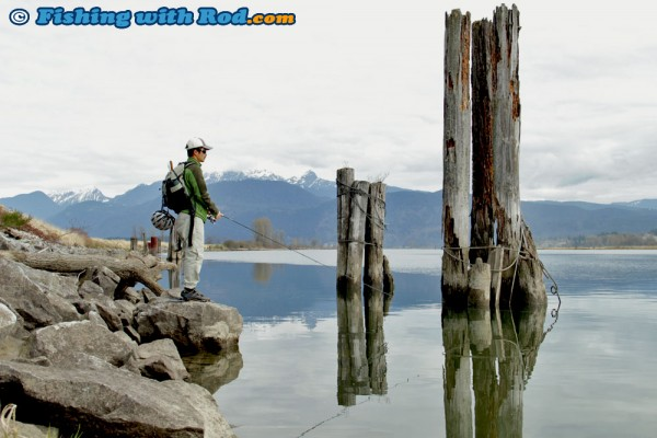 Hunting for Lower Fraser cutthroat trout