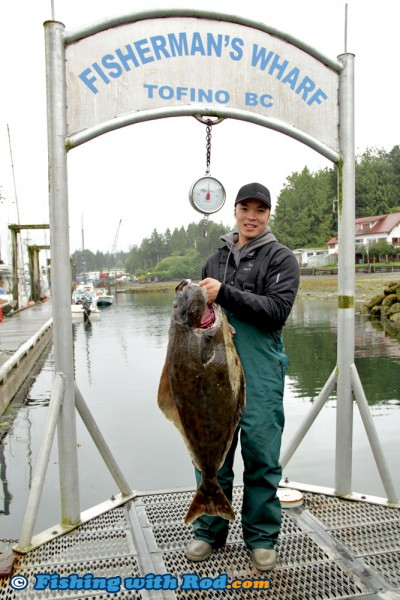 Big Halibut in Tofino BC