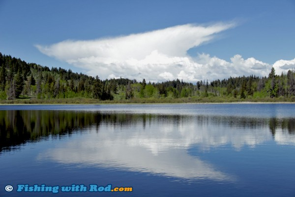 Calm Lake, Blue Sky, Paradise!