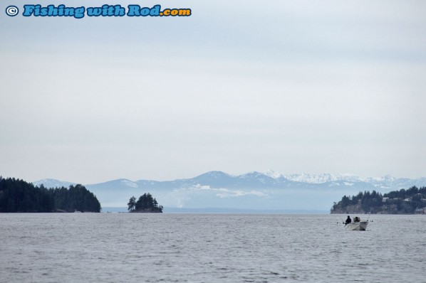 Howe Sound Salmon Fishing