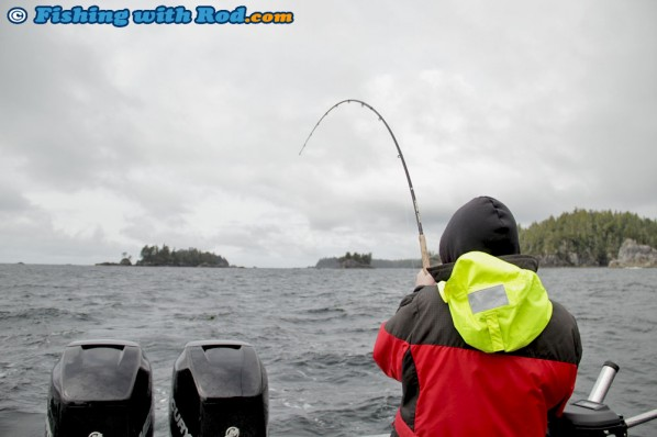 Battling a Chinook Salmon on the West Coast of Vancouver Island