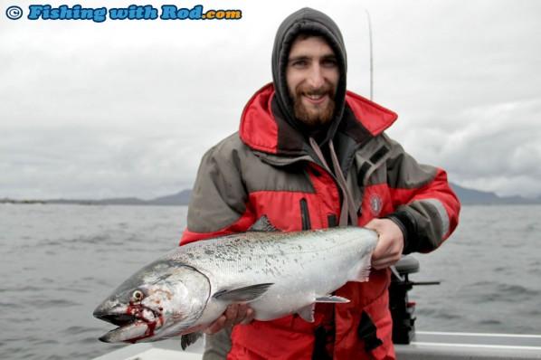 Dan's Chinook Salmon