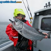 Kitty's Beautiful Chinook Salmon from Barkley Sound BC