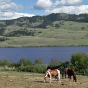 Amazing View While Driving Through Douglas Lake Ranch BC