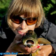 Cultus Lake Northern Pikeminnow