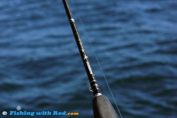 Shimano Trevala Rods, the Best for Halibut Fishing