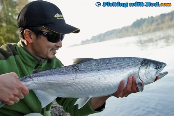 October coho salmon fishing in the Fraser River