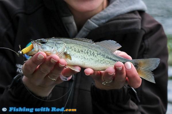 Okanagan s diverse fisheries fishing with rod blog for British columbia fishing license
