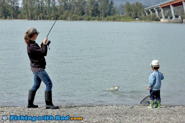 Catching Fraser River Pink Salmon