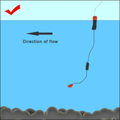 Chilliwack river winter steelhead fishery fishing with rod for Fishing line setup