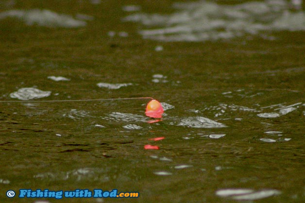 Float Depth Adjustment for River Fishing   Fishing with Rod