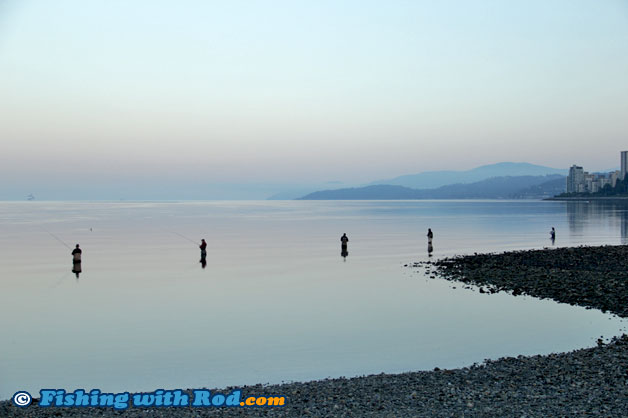 Beach Fishing For Pacific Salmon Fishing With Rod