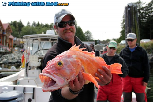 Red Snapper in Ucluelet