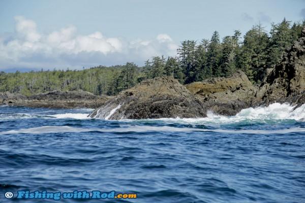 Big Waves in Tofino BC