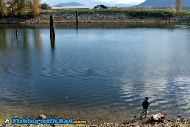 Slough bc fishing glossary fishing with rod for British columbia fishing license